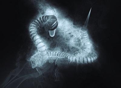 snake-1945345_960_720