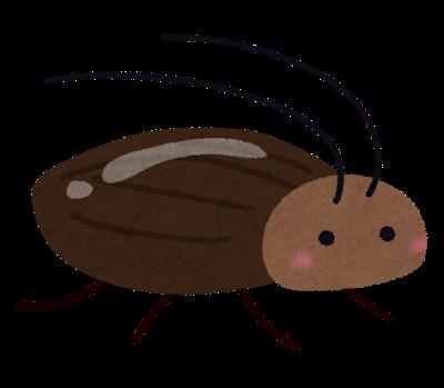 bug_gokiburi